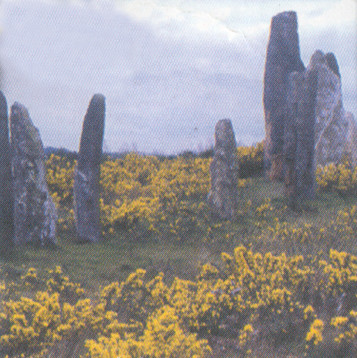Brittany typical moor scene with dolmens